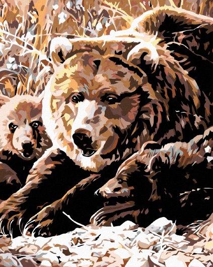 Malowanie po numerach – Grizli z młodymi