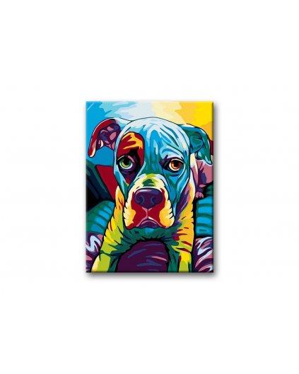 Malowanie po numerach - Kolorowy Staford
