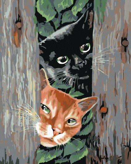 Malowanie po numerach – Czyhające koty