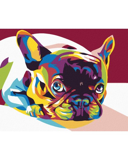 Malowanie po numerach – Kolorowy Bulldog