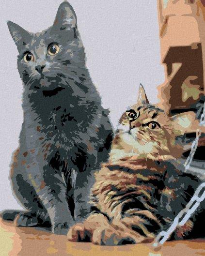 Malowanie po numerach – Małe kotki