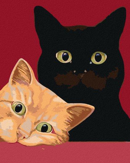 Malowanie po numerach – Dwa koty na czerwonym tle
