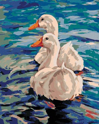 Malowanie po numerach - Dwie kaczki na wodzie