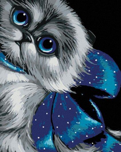Malowanie po numerach – Niebieskooka kotka z kokardą