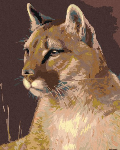 Malowanie po numerach – Puma