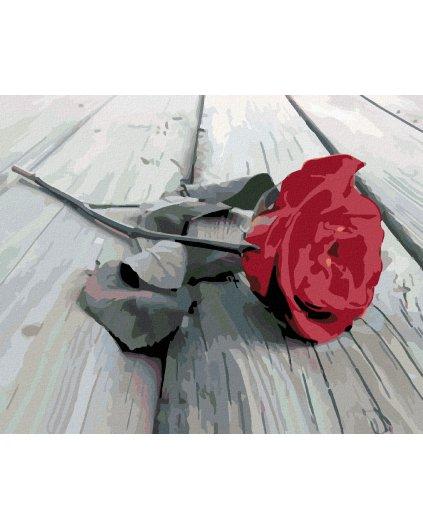 Malowanie po numerach – Czerwona róża