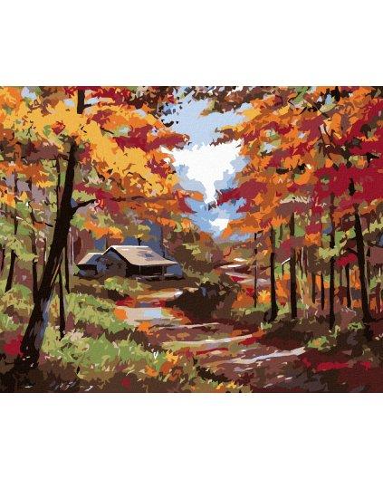 Malowanie po numerach - Domek w jesiennym lesie