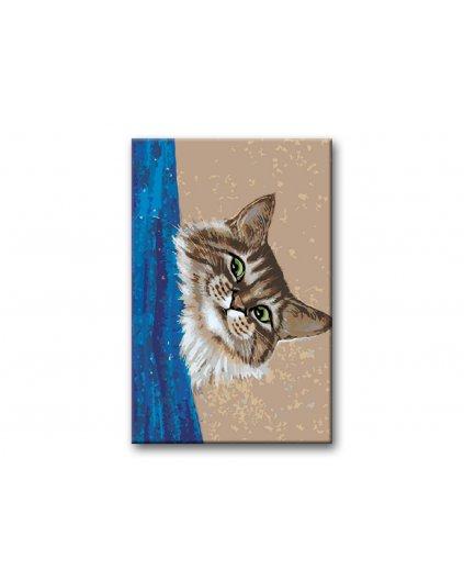Malowanie po numerach – Kotek za zasłoną