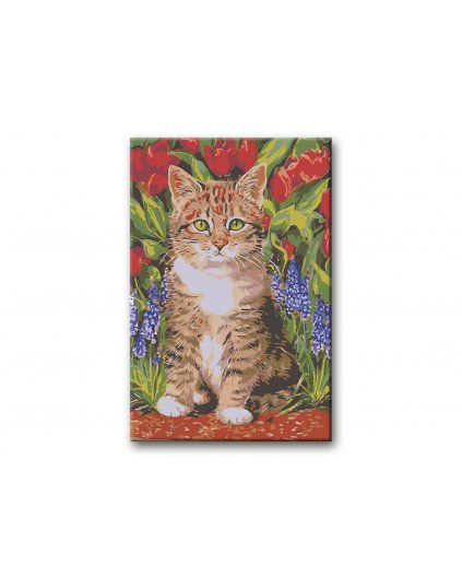 Malowanie po numerach – Kocię w tulipanach
