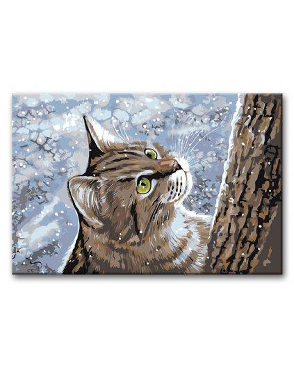 Malowanie po numerach – Kotek w zimie na śniegu