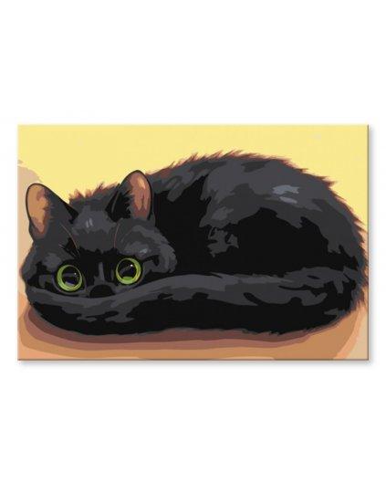 Malowanie po numerach – Schowany kotek