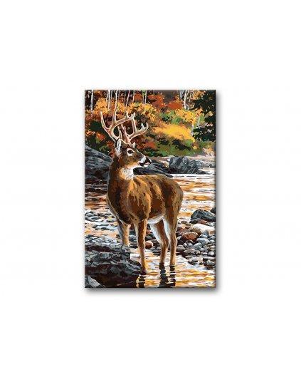 Malowanie po numerach – Jeleń nad strumieniem w lesie