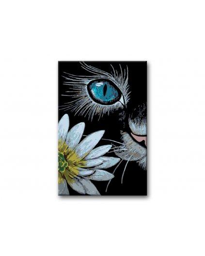 Malowanie po numerach – Kocie oko