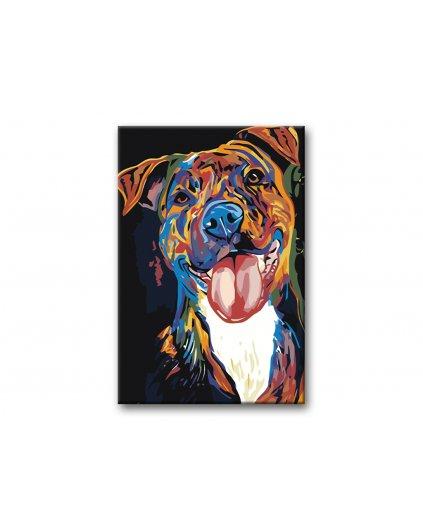 Malowanie po numerach – Psie spojrzenie