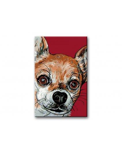 Malowanie po numerach - Chihuahua na czerwonym tle