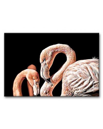 Malowanie po numerach - Flamingi na czarnym tle