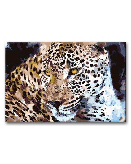 Malowanie po numerach - Leopard