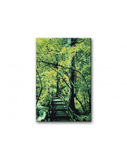 Malowanie po numerach – Most w zieleni