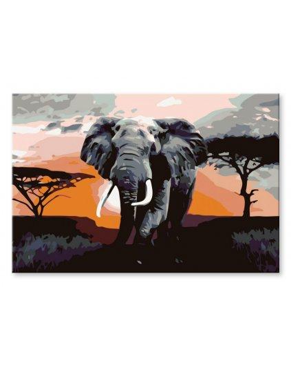 Malowanie po numerach - Słonie na sawannie