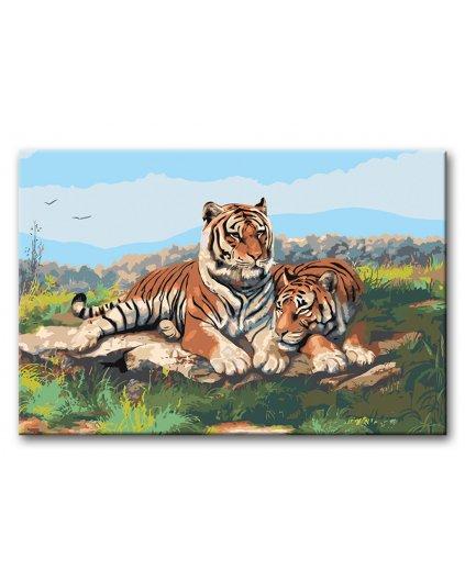 Malowanie po numerach - Tygrys z tygrysica