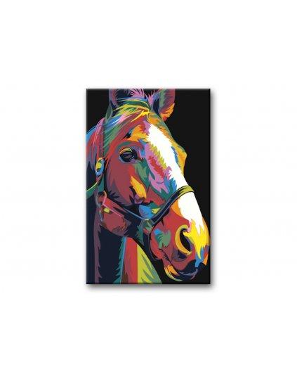 Malowanie po numerach – Kolorowa klacz