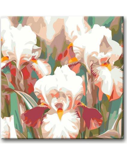 Malowanie po numerach – Różowo białe irysy