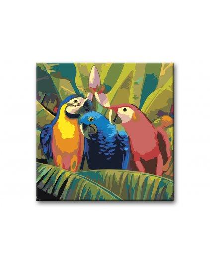 Malowanie po numerach - Papugi na palmie