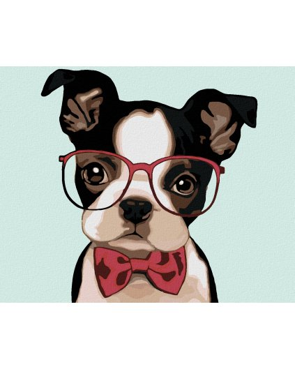 Malowanie po numerach - Bulldog w okularach