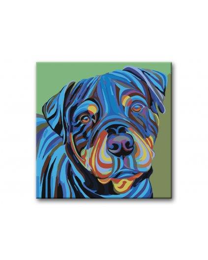 Malowanie po numerach – Spojrzenie rottweilera