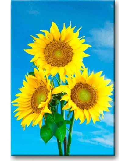 Malowanie po numerach – Piękne słoneczniki
