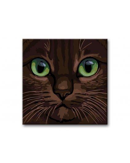 Malowanie po numerach – Zielonooki kot