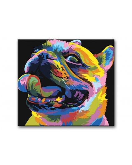 Malowanie po numerach – Kolorowy mops