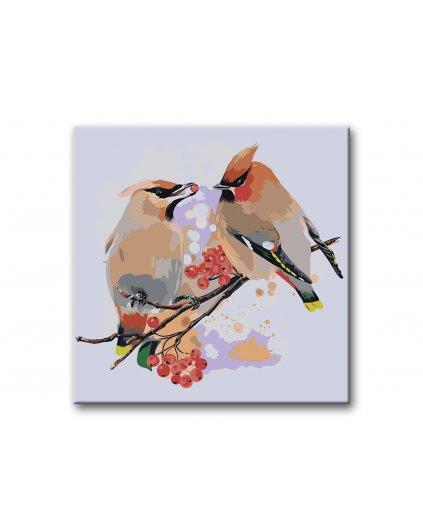 Malowanie po numerach – Ptaki na jarzębinie