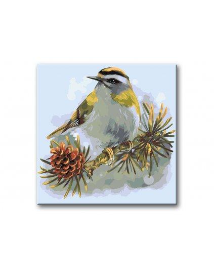 Malowanie po numerach – Ptaszek na gałązce