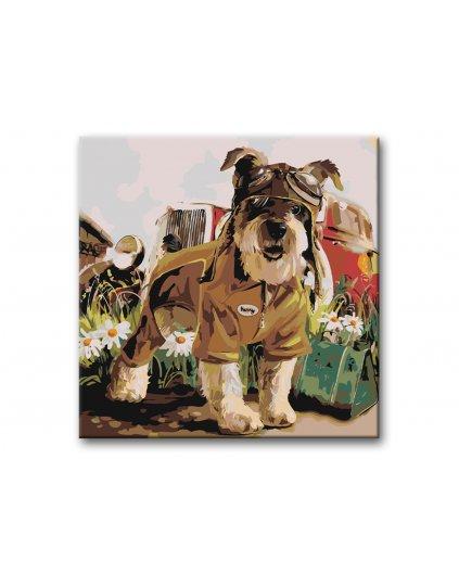 Malowanie po numerach – Pies pilotem