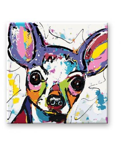 Malowanie po numerach – Kolorowa Chihuahua