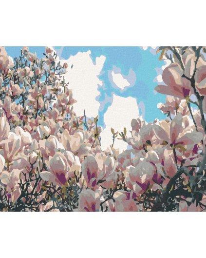 Malowanie po numerach – Kwitnące magnolie
