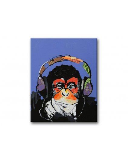 Malowanie po numerach – Szympans ze słuchawkami