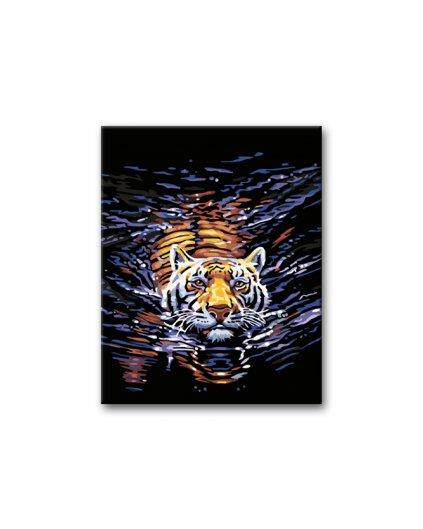 Malowanie po numerach - Tygrys w wodzie