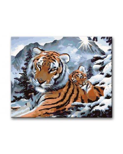 Malowanie po numerach – Tygrysica z młodym
