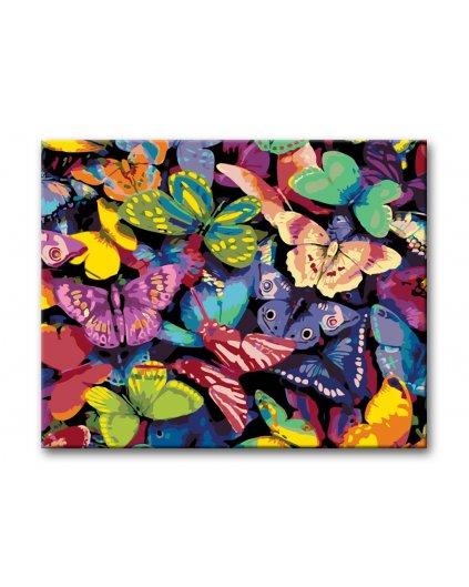 Malowanie po numerach – Kolorowe motyle