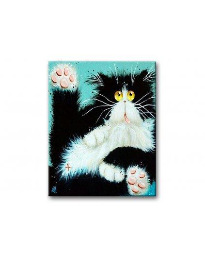 Malowanie po numerach – Wystraszony czarno-biały kot