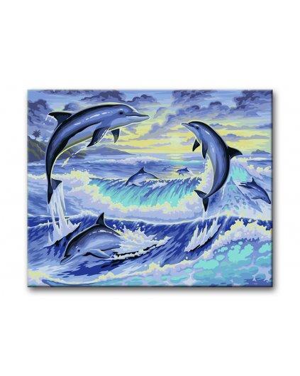 Malowanie po numerach - Delfiny w tańcu