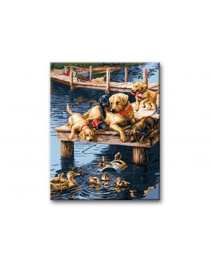 Malowanie po numerach – Psy nad wodą
