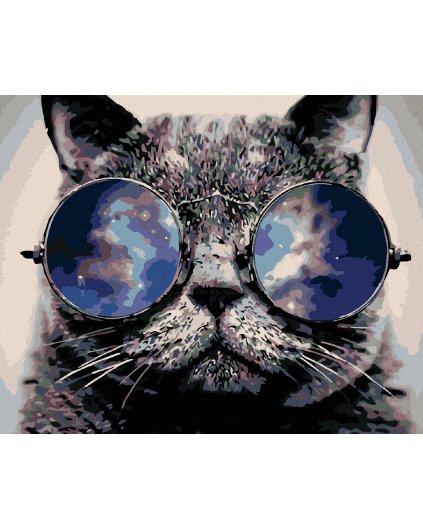 Malowanie po numerach – Kot w okularach