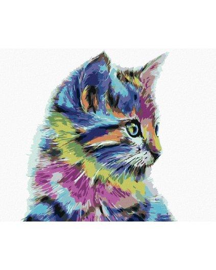 Malowanie po numerach – Kolorowy kotek