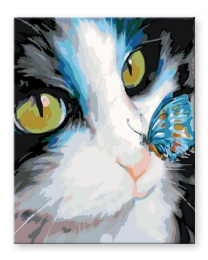 Malowanie po numerach – Kot z motylem na nosie