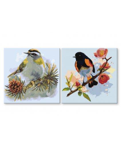 Malowanie po numerach – Komplet – Ptaki