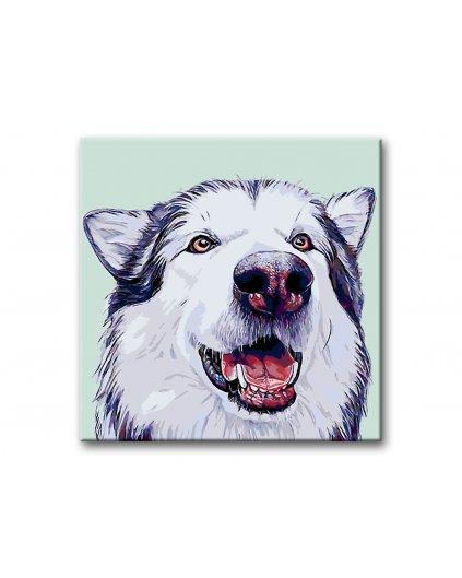 Malowanie po numerach - Wesołe psisko