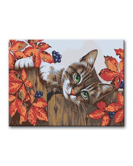 Malowanie po numerach – Kot w liściach bluszczu